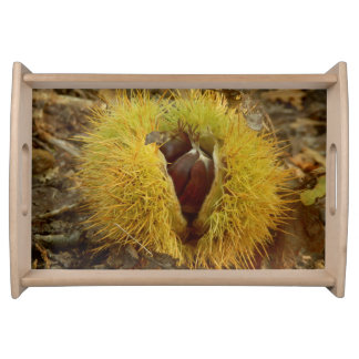 Sweet Chestnut Serving Tray