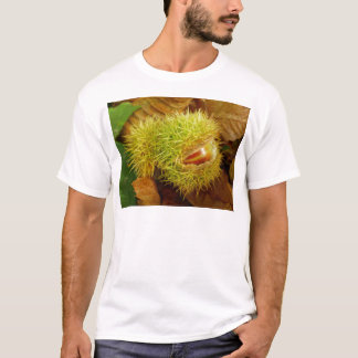 Sweet Chestnut T-shirt