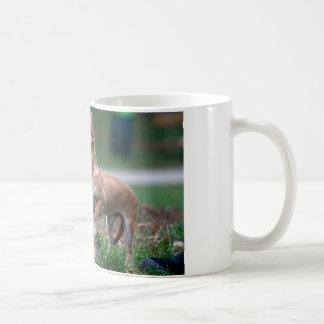Sweet Chihuahua Puppy Gundog Wannabe Basic White Mug