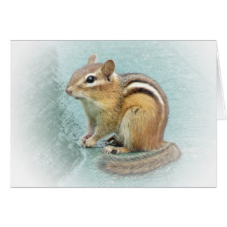 Sweet Chipmunk Card