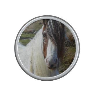 Sweet Connemera Pony Speaker