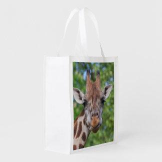 Sweet Curios Giraffe