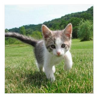 Sweet Cute Cat 13 Cm X 13 Cm Square Invitation Card