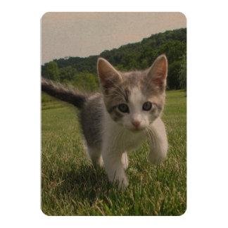 Sweet Cute Cat 13 Cm X 18 Cm Invitation Card