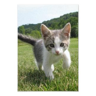 Sweet Cute Cat 9 Cm X 13 Cm Invitation Card