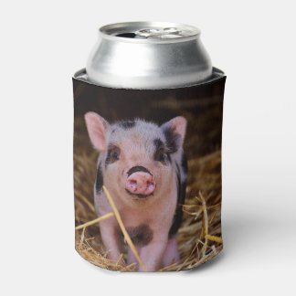 Sweet Cute Pig Can Cooler