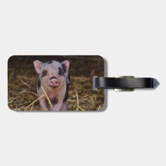 Sweet Cute Pig Luggage Tag