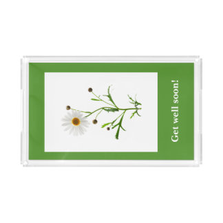 Sweet Daisy on the Green Acrylic Tray