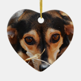 Sweet dog laying in hay ceramic heart decoration