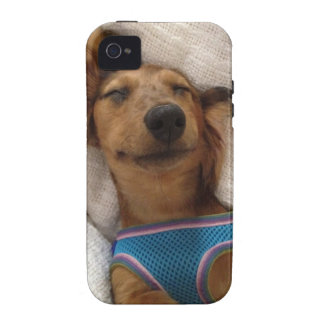 Sweet Doggie Dreams Case-Mate iPhone 4 Cases