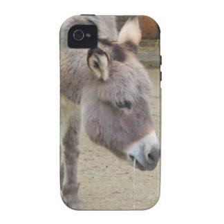 Sweet Donkey, Animal Grey, Horse Family Case-Mate iPhone 4 Cases
