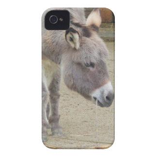 Sweet Donkey, Animal Grey, Horse Family Case-Mate iPhone 4 Case