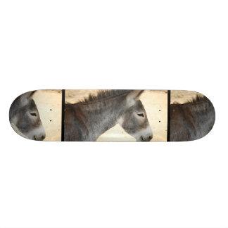 Sweet Donkey Skateboard Decks