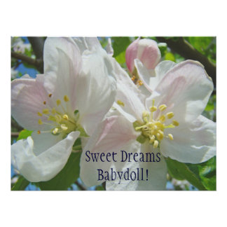 Sweet Dreams Babydoll! Baby Girl's Room art Floral Posters