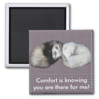 Sweet Dreams Ferrets Magnet