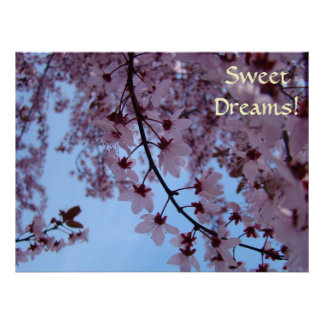 Sweet Dreams! Wall Art Girls Room Pink Blossoms Poster