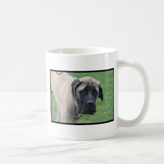 Sweet English Mastiff Classic White Coffee Mug