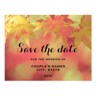 Sweet Fall Red Golden Maple Save The Date Wedding Postcard