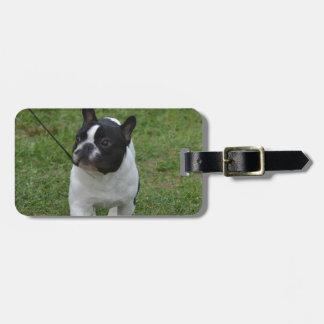 Sweet French Bulldog Luggage Tag