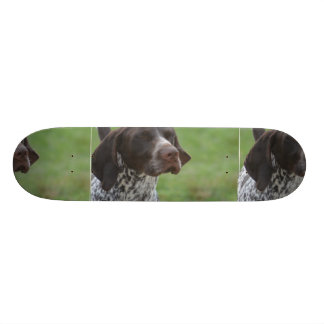 Sweet German Shorthaired Pointer 20 Cm Skateboard Deck