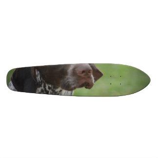 Sweet German Shorthaired Pointer Skate Board
