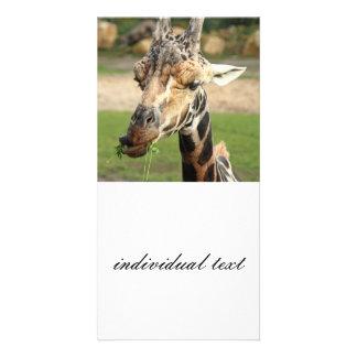 sweet giraffe photo card