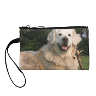 Sweet Golden Retriever Coin Purse
