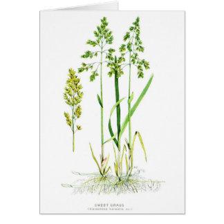 Sweet Grass Botanical Card