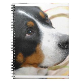 Sweet Greater Swiss Mountain Dog Notebooks