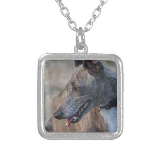 Sweet Greyhound Jewelry
