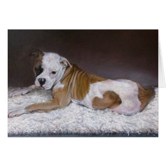 Sweet Heart, American Bulldog Card