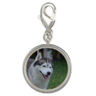 Sweet Husky Bracelet