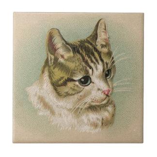 Sweet Kitten Tile