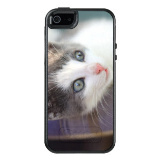 Sweet Kitty In Plaid Bed OtterBox iPhone 5/5s/SE Case