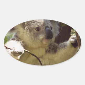 sweet Koala baby Oval Sticker