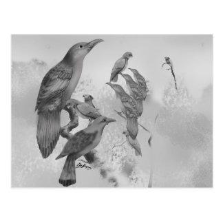 Sweet Li'l Aussie Birds Postcard