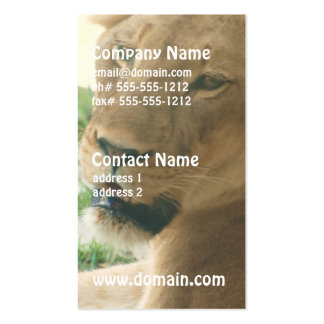 Sweet Lioness Business Cards