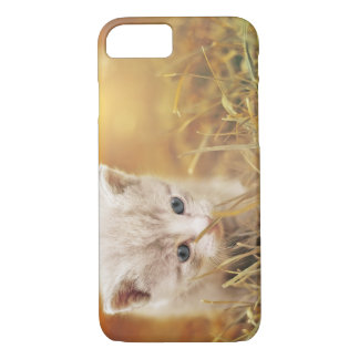 Sweet Little Cat iPhone 8/7 Case