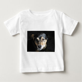 Sweet Little Dog Posing for the Camera Baby T-Shirt