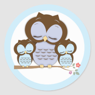 Sweet Little Mama & Twin Baby Owls on a Branch Classic Round Sticker