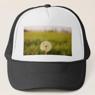 Sweet Lonely 'taraxacum' dandelion Cap