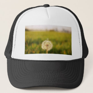 Sweet Lonely 'taraxacum' dandelion Trucker Hat
