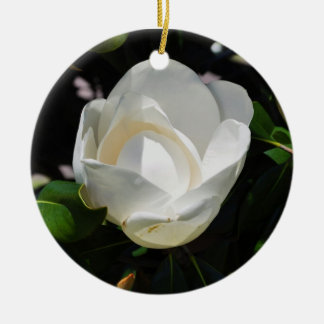Sweet Magnolia Christmas Ornament