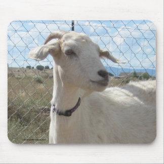Sweet Mama Doe Pygmy Goat - Western Mouse Pad