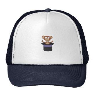 sweet monkey in hat