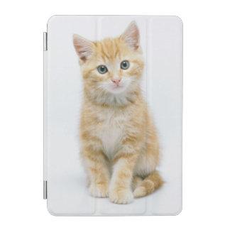 Sweet Orange Tabby iPad Mini Cover