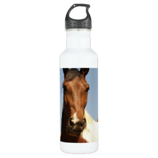 Sweet Paint Horse 710 Ml Water Bottle