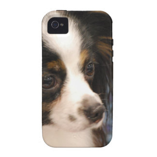 Sweet Papillon Puppy iPhone 4 Cover