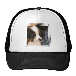 Sweet Papillon Puppy Hat