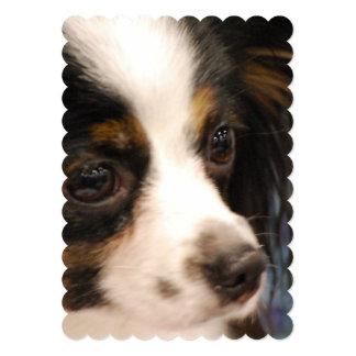 "Sweet Papillon Puppy 5"" X 7"" Invitation Card"